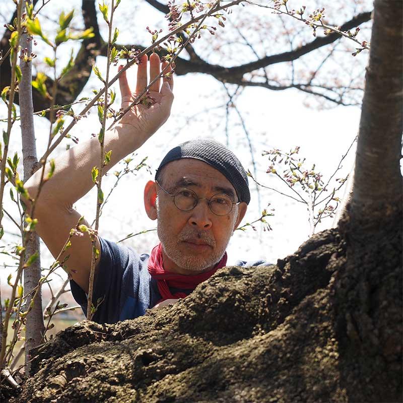 3/2 - 3/8 写真家内藤忠行 写真展「桜」